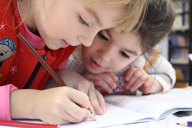 A Variety of Lesson Plans for Students with Disabilities