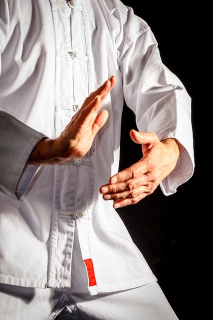 Tai Chi: The Moves, the Method